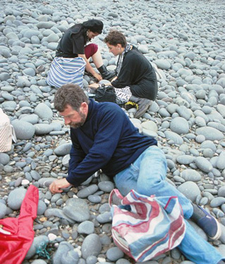 Collecting pebbles and stones