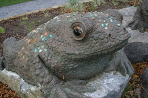 One of the toads in Victoria Park.